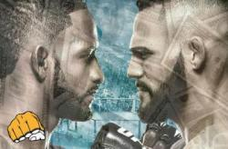 UFC Fight Night 140 - Les salaires