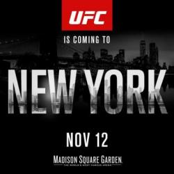 UFC 205 - Extended Preview