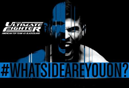 TUF 21 - THE ULTIMATE FIGHTER 21 FINALE