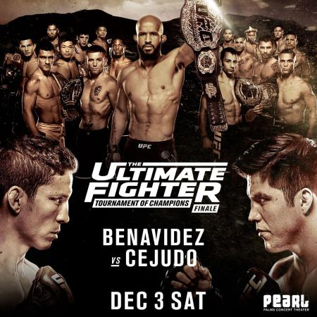 TUF 24 - THE ULTIMATE FIGHTER 24 FINALE