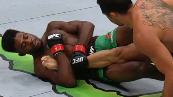 Aljamain Sterling contre Renan Barao